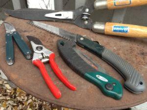 ابزار کاشت گیاه