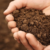 ضدعفونی خاک
