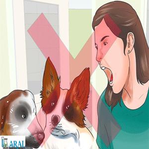 با حیوان خانگی رفتار مناسب داشته باشید