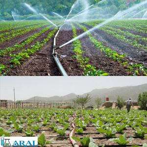 معرفی انواع سیستم های آبیاری کشاورزی برای محصولات کشاورزی