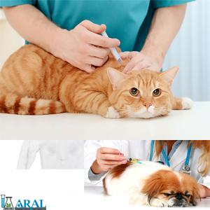 واکسن های حیوانات خانگی