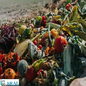 بازیافت زباله های غذایی